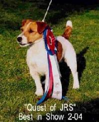 Tartan is line bred with Quest, being his Grand/Great grandfather on the top and bottom of his pedigree.