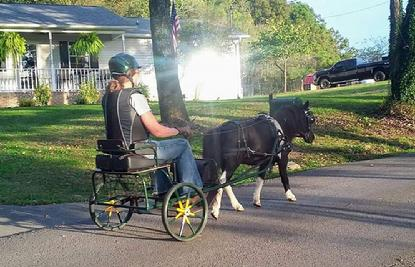 . Laura Ann Adams & Ellie driving around the neighborhood in the Aero Crown made by bellcrown miniature horse cart